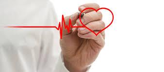 guide to cardiac diagnosis u2013 stress echo u2013 heartscope victoria