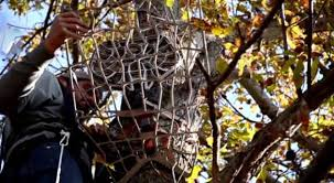 tree stand tips for each phase of deer season whitetail properties