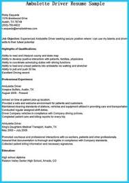 Bus Driver Resume Template Cto Resume Or Chief Technical Officer Resume Can Be Considered As