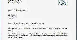 bunch ideas of sample cover letter for fresh chartered accountant