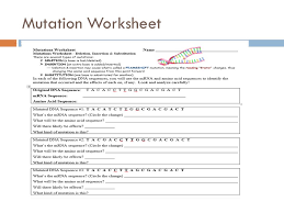 gene and chromosome mutation worksheet fts e info