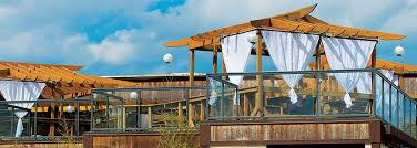 cultured pearl restaurant u0026 sushi bar rehoboth beach de