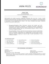 free profile finder resume exles for government
