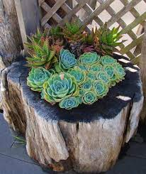 Craft Ideas For Garden Decorations - 16 diy ideas for how to recycle tree stumps for garden decor
