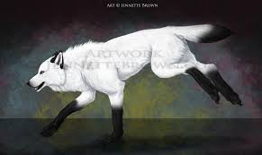 image the black and white wolf png the rp fear wiki fandom