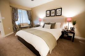 Light Colored Bedroom Furniture Bedroom Delightful Picture Of Bedroom Decoration Using