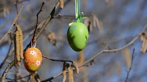 fruit and nut easter eggs nut wood catkins and hanging easter eggs in the wind stock