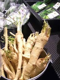 qu est ce que le raifort cuisine raifort propriétés bienfaits vertus et atouts santé