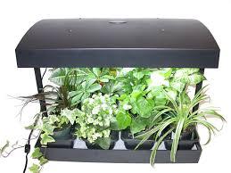 indoor herb garden with light gardening ideas
