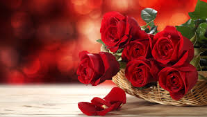 How Much Is A Dozen Roses Bulgaria Florist U0026 Flowers Delivery
