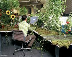 plants for office desk office worker at desk covered in plants and flowers rear view stock