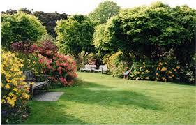New Zealand Botanical Gardens Visit Dunedin In New Zealand Impressive Magazine