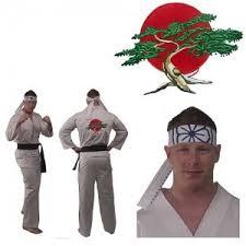 karate kid costume monday squee dress like johnny or the karate kid girl