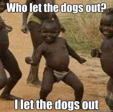 Who Let The Dogs Out Meme - who let the dogs out i let the dogs out third world success kid