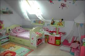 chambre fille 3 ans deco chambre fille 2 ans beau chambre fille 3 ans plante interieur