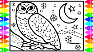how to draw a snowy owl step by step arctic animals coloring