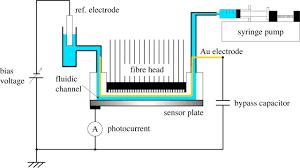 biological imaging using light addressable potentiometric sensors