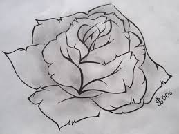 gallery sketches of roses drawing art gallery