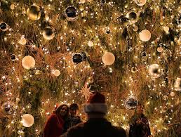 16 photos of the prettiest christmas trees lit up in nyc
