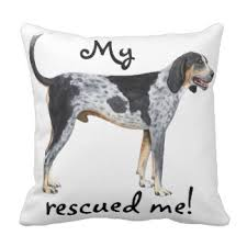bluetick coonhound apparel bluetick coonhound pillows decorative u0026 throw pillows zazzle