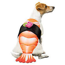 Halloween Sushi Costume Thrills U0026 Chills Halloween Sushi Dog Costume Dog Costumes