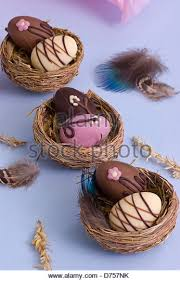 Chocolate Easter Egg Decorating Kit by Delicious Chocolate Easter Eggs On Stock Photos U0026 Delicious