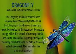 dragonflies a and a significant meaning this is what