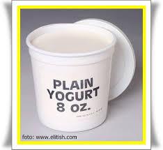 cara membuat yoghurt yang kental just share cara membuat yoghurt