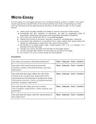 Example Of An Narrative Essay 141 Micro Essay Philosophy Of Mind