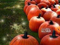 fall halloween background pumpkin wallpaper wallpapers browse