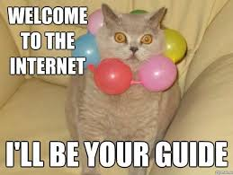 Internet Meme Cat - welcome to the internet weknowmemes