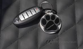 nissan rogue infiniti equivalent nissan rogue dogue for fido friendly family adventures
