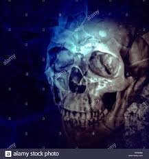 halloween picture background human skull on ruins place horror background for halloween concept