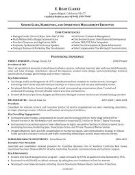 Direct Support Staff Resume Awesome Example Of Core Competencies In Resume 51 For Your