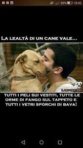 Ikea Cuccia Cane by 16 Best Le Migliori Cucce Per Cani Images On Pinterest Dog