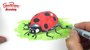 how to draw a cute ladybug ladybird youtube