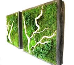 indoor wall plant u2013 ecofloat info