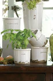 Indoor Herb Planters by Best 25 Herb Pots Ideas Only On Pinterest Diy Herb Garden