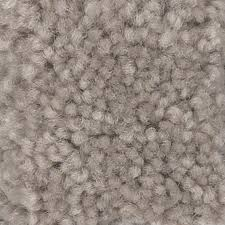 shop shaw intuition i 15 ft w tumbleweed textured interior carpet