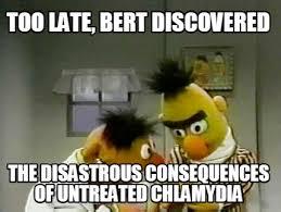 Ernie Meme - meme maker burt and ernie generator
