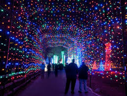 where to go see christmas lights where are the best places in la to see christmas lights for 2014