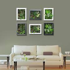 Amazon Succulents 3d Artificial Succulents Wall Hanger Imitation Flowers Planter