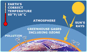 global warming causes and effects the effects of global warming on the ecosystem