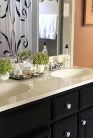 Best Bathroom Counter Decor Ideas On Pinterest Bathroom - Bathroom counter designs