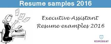 Best Executive Assistant Resume by Executive Assistant Resume Examples 2016 Get Your Job