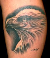 eagle portrait tattoo photos pictures and sketches tattoo
