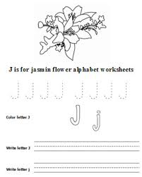 plants and flowers lesson plan free printable plants kids activities