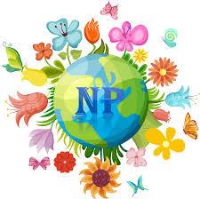 nplants nursery u0026 landscape services