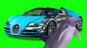 green bugatti dolphin with a bugatti green screen youtube