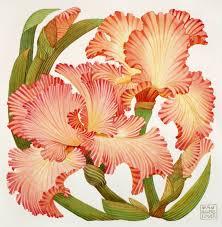 tiger iris a powers flower print wallow gallery